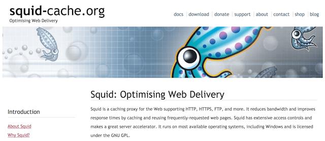 Server Proxy HTTPS: Squid