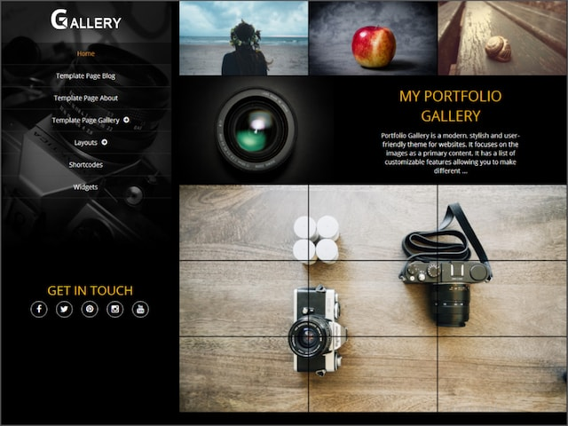 Temi wordpress portfolio: Portfolio Gallery