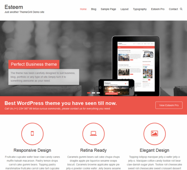 Temi wordpress gratuiti: esteem